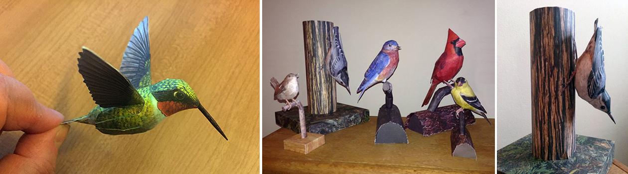 3D Life-Size Birds